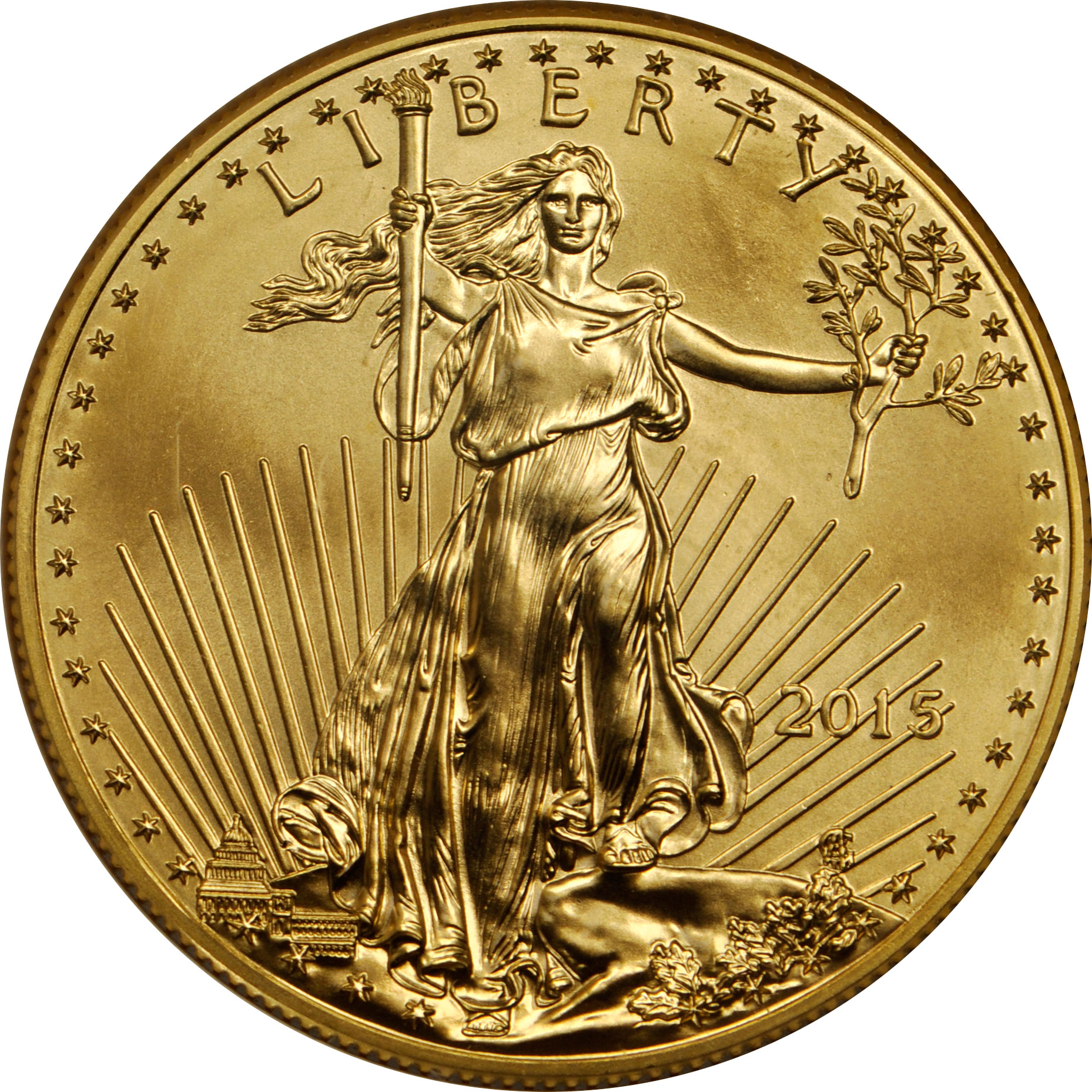 Value Of 2015 10 Gold Coin Sell 25 Oz U S A Gold Eagle