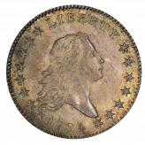 Flowing Hair Half Dollar (1794-1795) Image