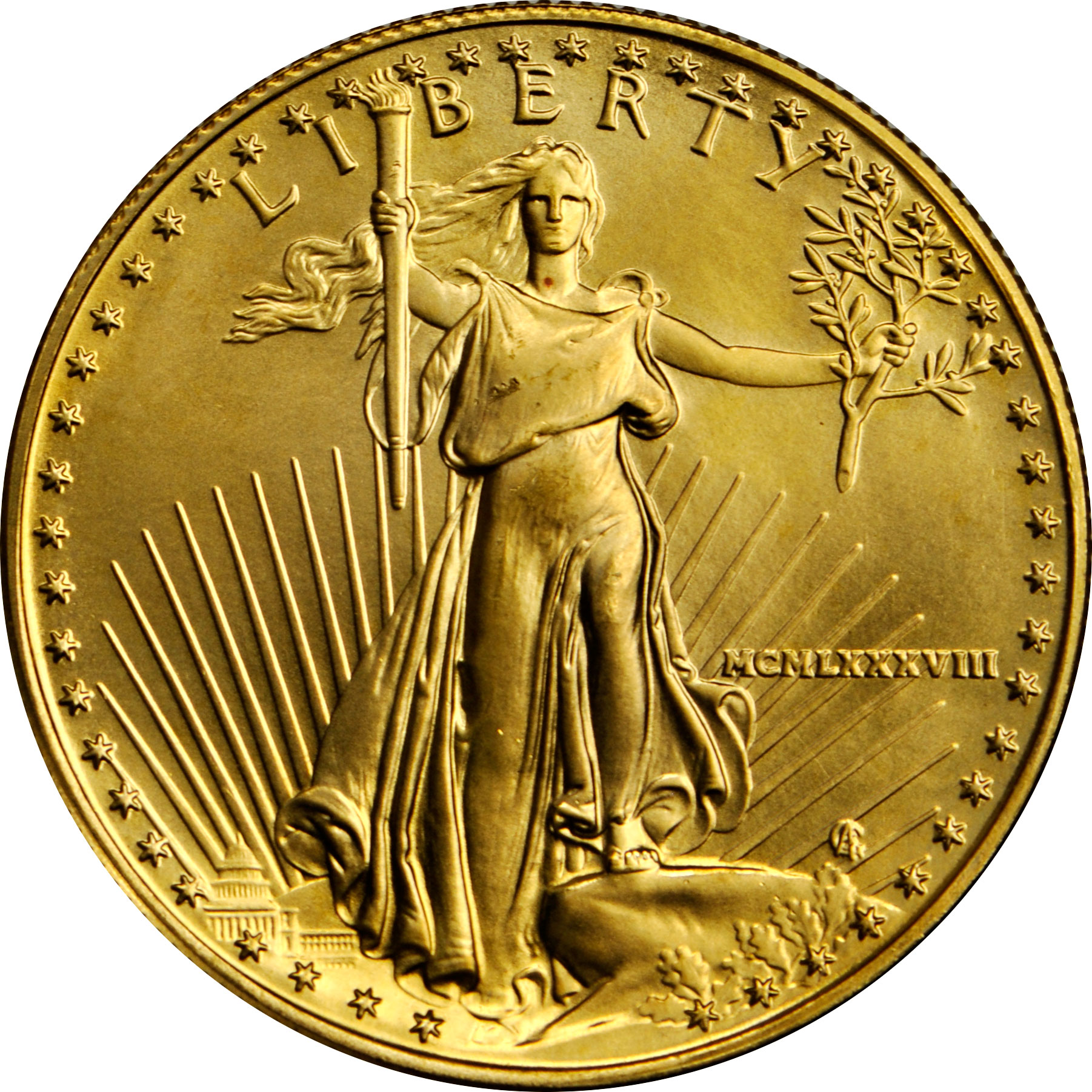 Value Of 1988 25 Gold Coin 5