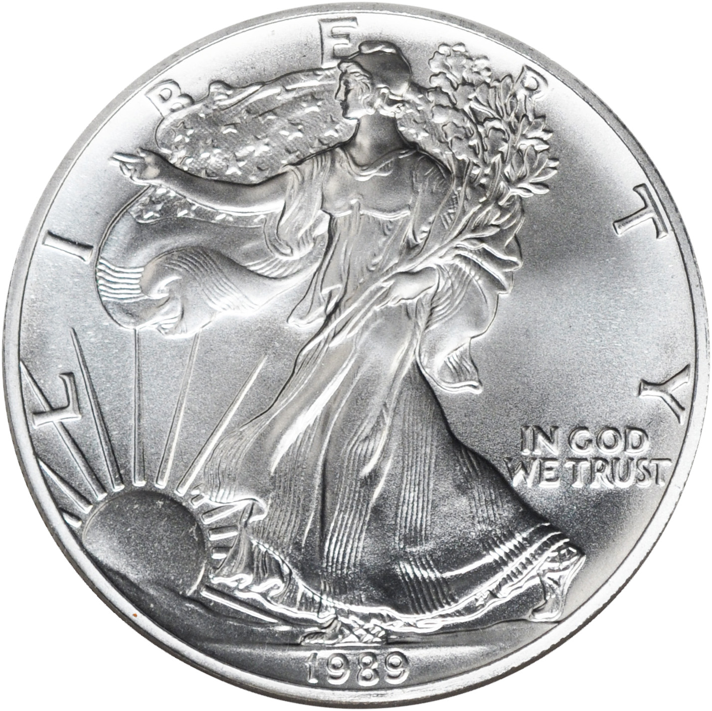 Value Of 1989 1 Silver Coin American