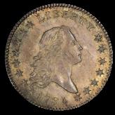 Flowing Hair Half Dollar (1794-1795) Image