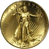 Ultra High Relief $20 Gold (2009) Image